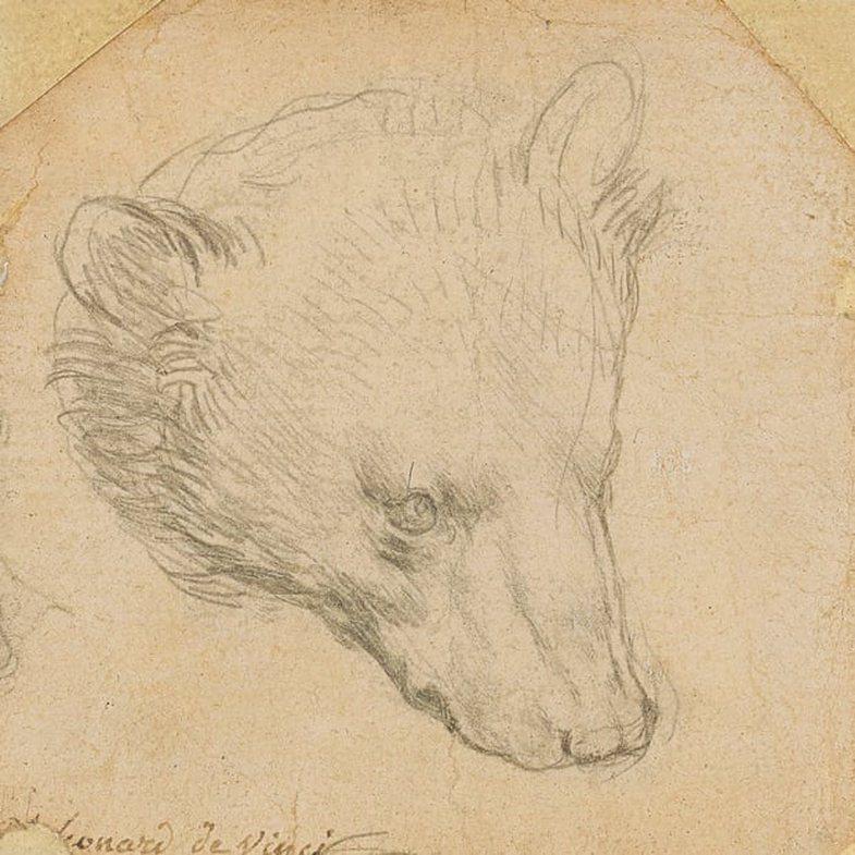Një vizatim i rrallë i Leonardo da Vinçit pritet të shitet